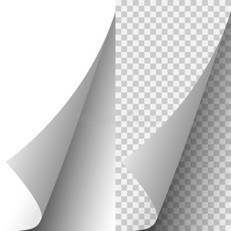Canto de papel realístico branco da página do vetor ilustração stock