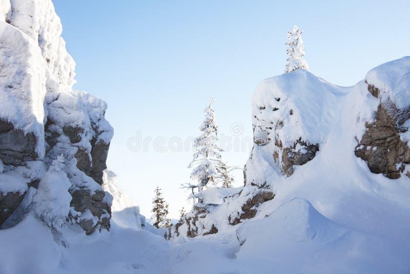 Canto de Zyuratkul Piceas y rocas nevadas foto de archivo libre de regalías