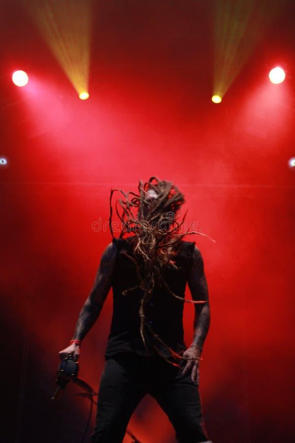 Cantor masculino da estrela do rock com cabelo longo imagem de stock royalty free