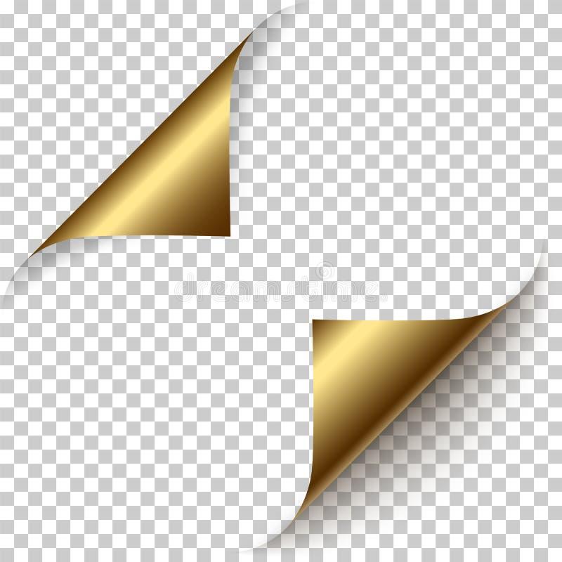 Cantos dourados realísticos do papel da folha do vetor ajustados ilustração stock