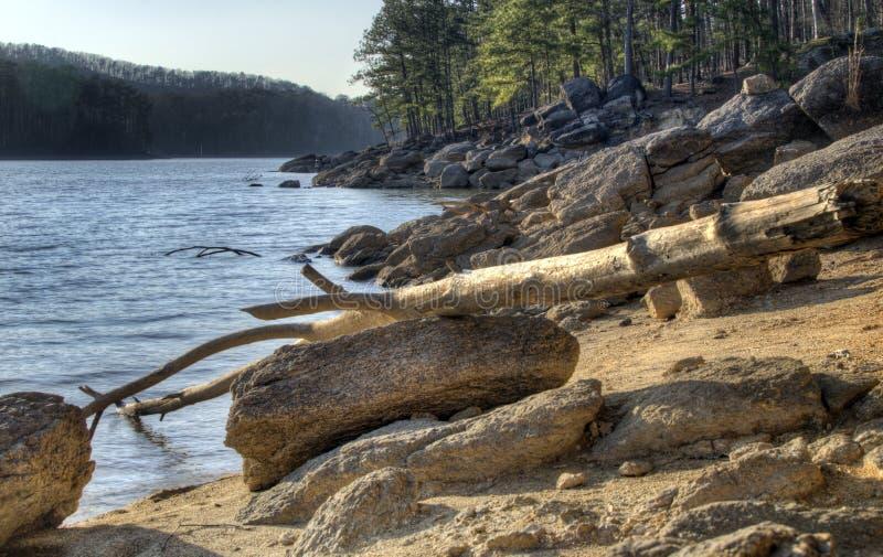 Cantos rodados de la orilla del lago y madera de deriva del lago Allatoona, parque de estado de la montaña del top rojo, Georgia, foto de archivo