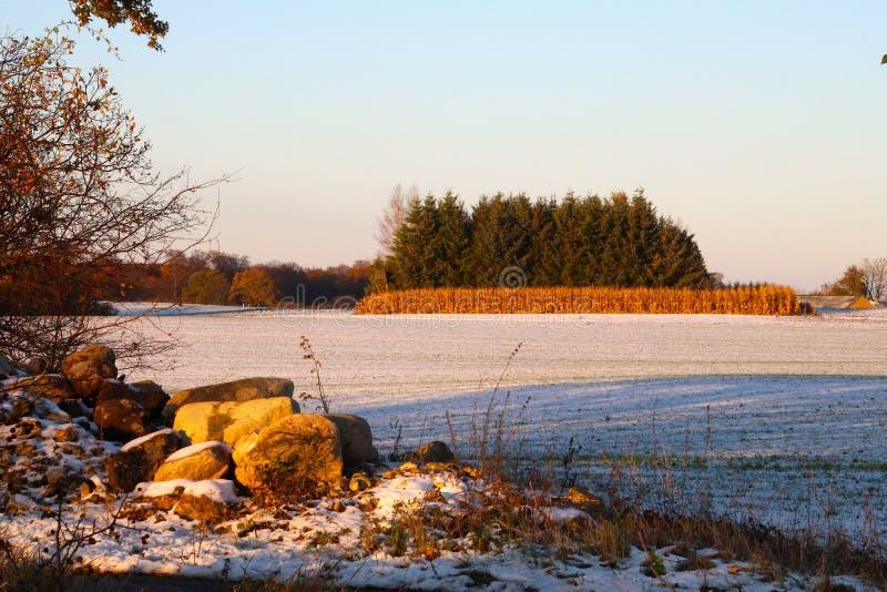 Cantos rodados en contraste agradable con la nieve fotografía de archivo