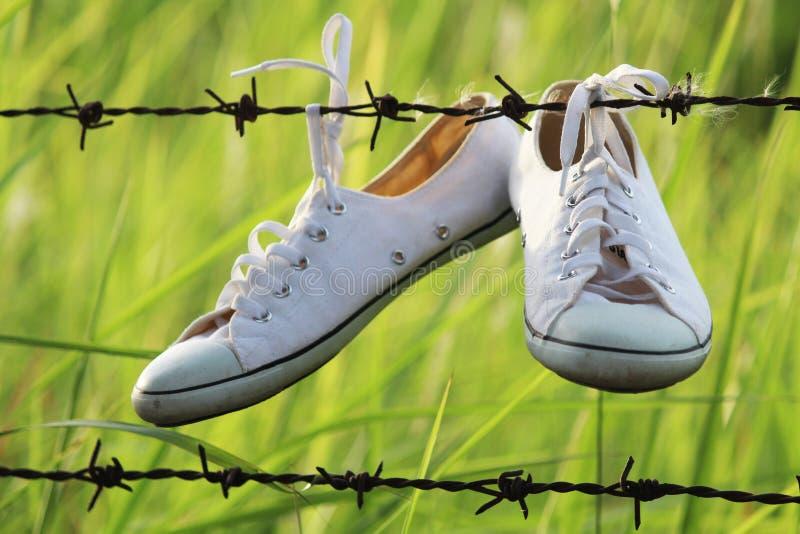 Download Canvas Shoes hanging stock image. Image of trekking, walking - 32474589