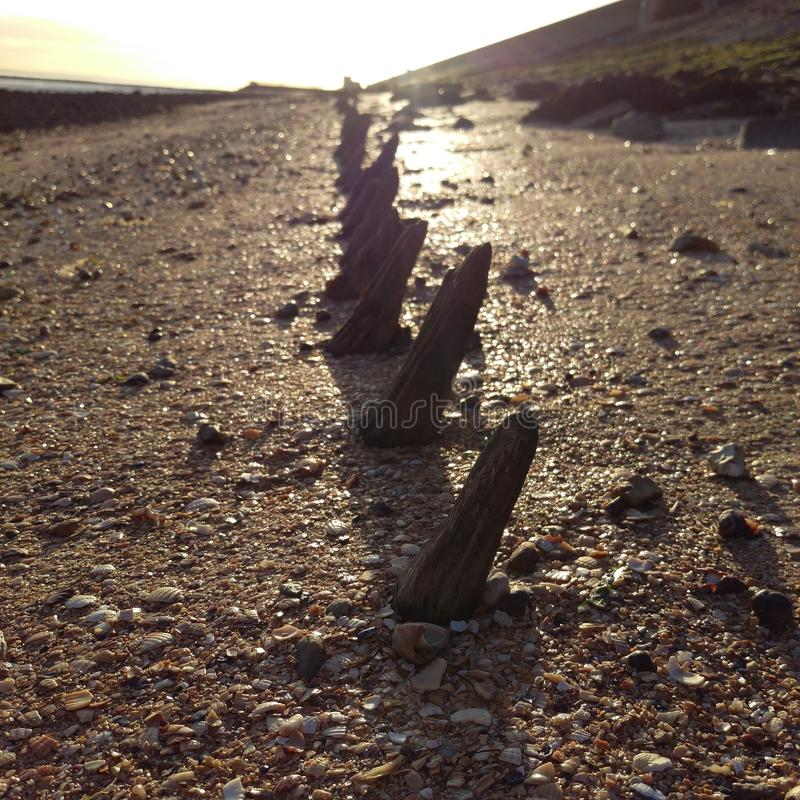 Canvey Island, Essex royalty-vrije stock foto