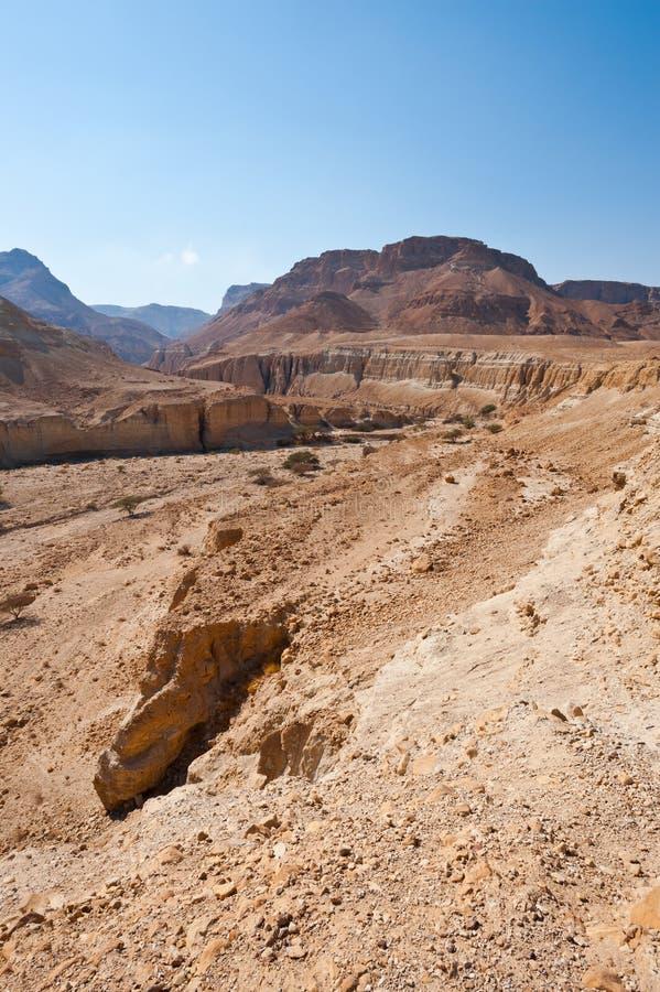 Download Canyon Stock Photo - Image: 26987620
