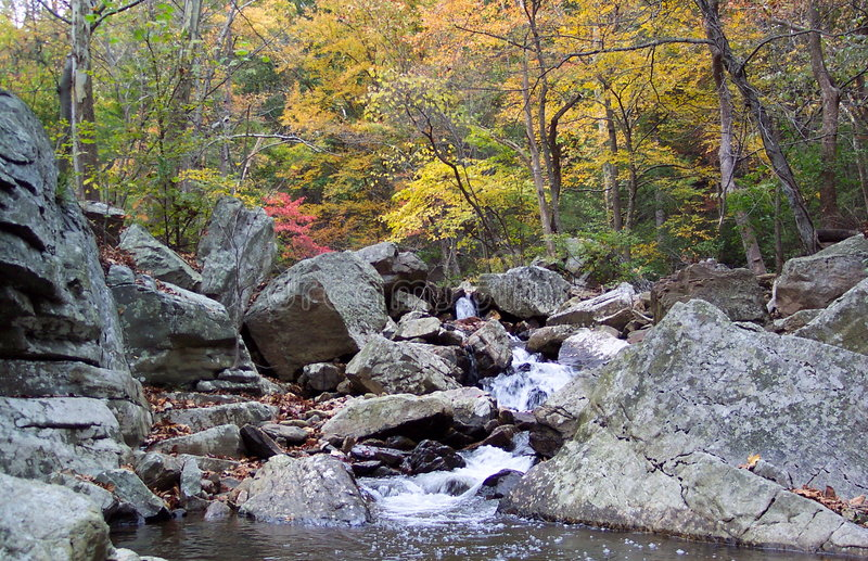 Download The Canyon stock photo. Image of october, fall, leaf, hiking - 31648