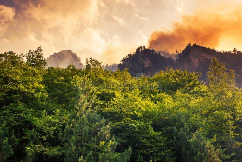 Canyon image libre de droits