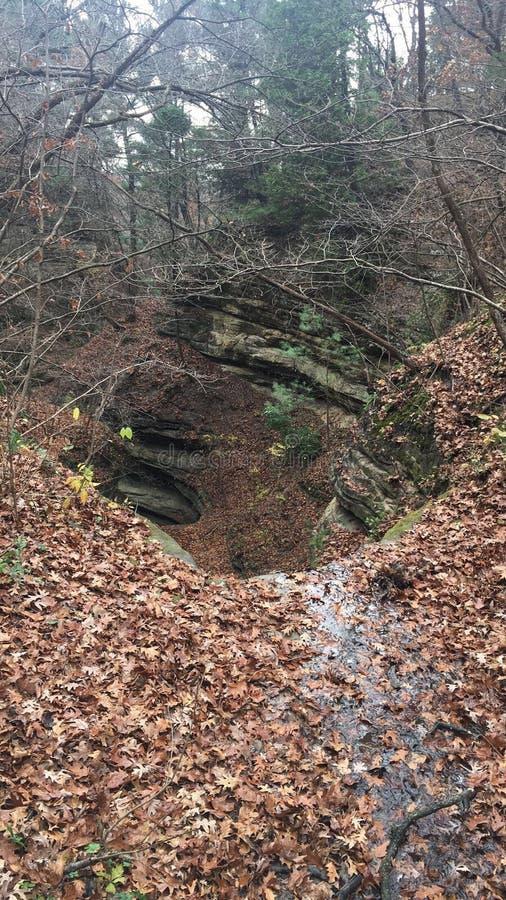 Canyon affamé de roche photos stock