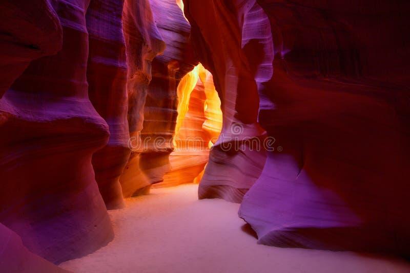Canyon Arizona dell'antilope su terra navajo vicino alla pagina immagini stock libere da diritti