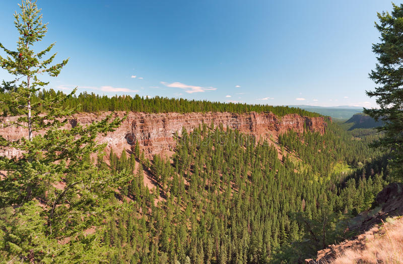 Canyon in Chasm Provincial Park stock photo