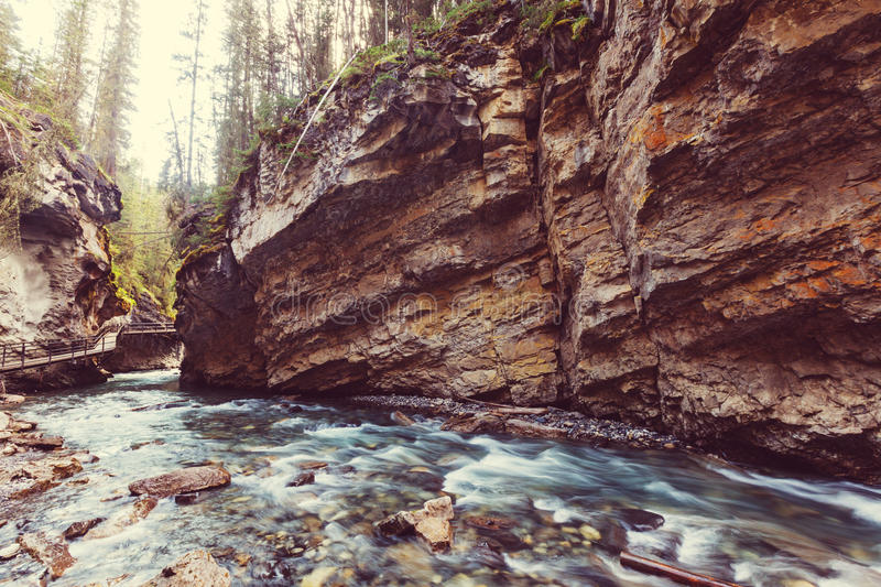 Canyon dans Banff NP photo stock