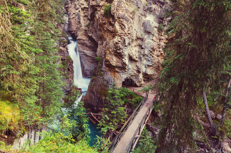Canyon dans Banff NP photos libres de droits