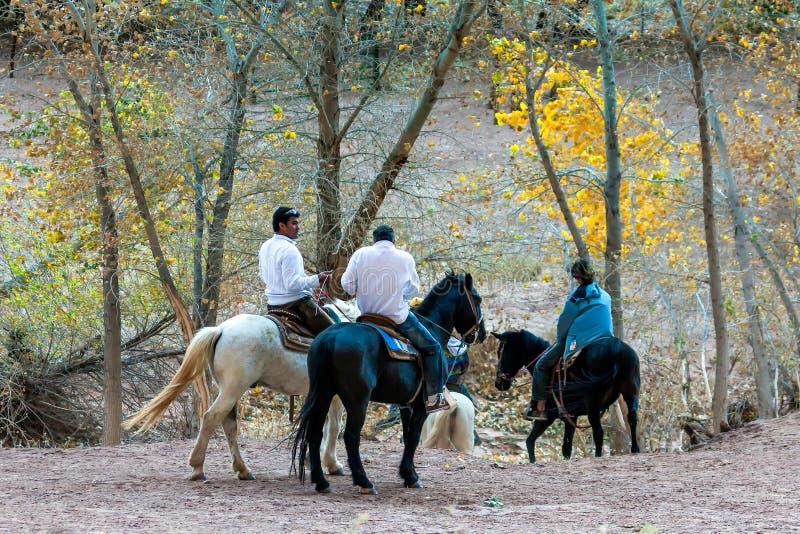 CANYON DE CHELLY, ARIZONA/USA - 11月12日:在加州的马骑术 库存照片