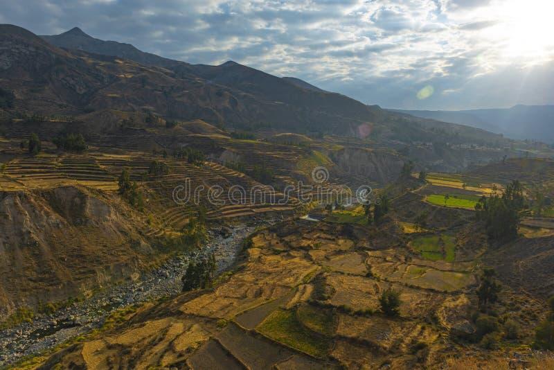 Canyon de Colca et rivière, Arequipa, Pérou image libre de droits
