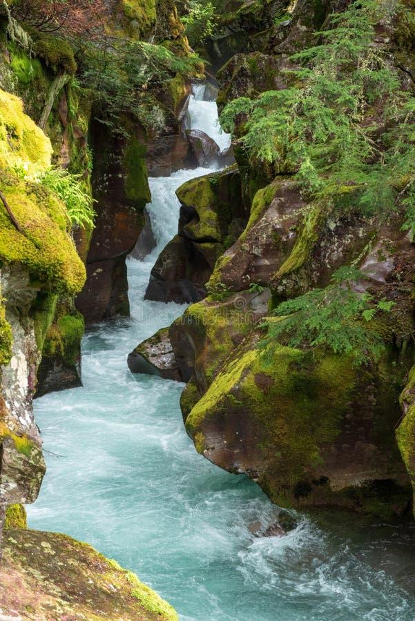Canyon de crique d'avalanche photographie stock libre de droits