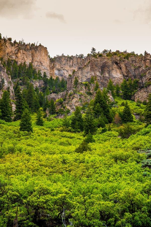 Canyon de Glenwood dans le Colorado image libre de droits