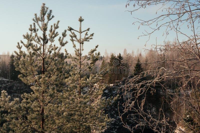 Canyon de marbre en hiver photographie stock