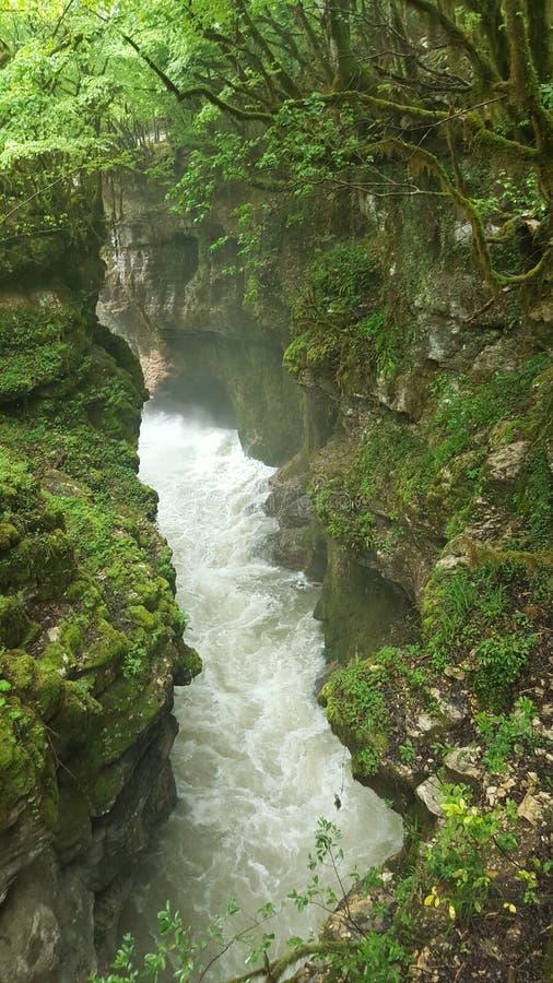 Canyon de Martvili photos stock
