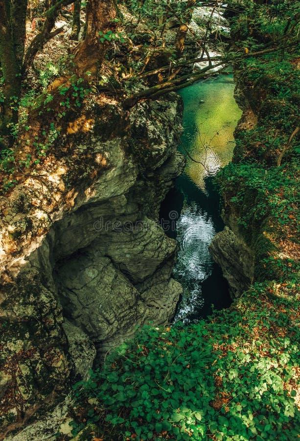 Canyon de Martvili dans le dessus d'été de la vue, la Géorgie photo libre de droits