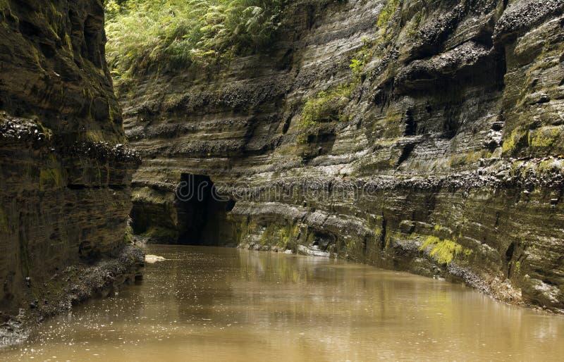 Canyon de rivière aux Fidji images stock