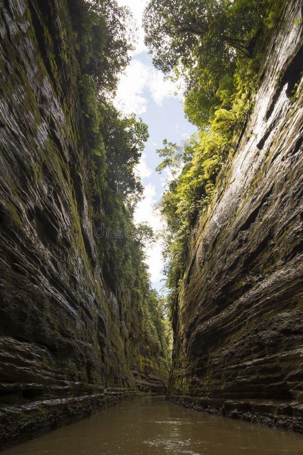 Canyon de rivière, montagnes de Fijiian photographie stock libre de droits