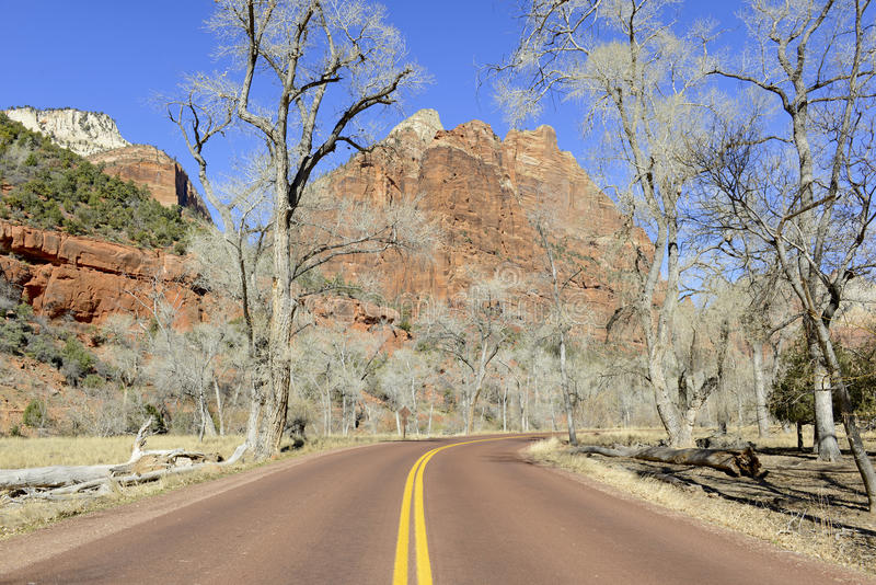 Canyon de roche et montagnes rouges, Zion National Park, Utah images stock