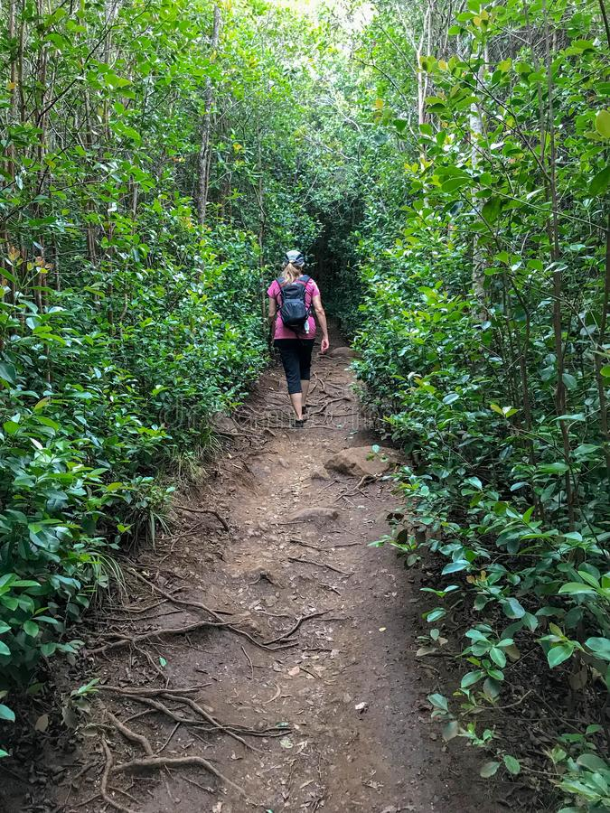 Canyon de Waimea, Kauai, Hawaï, Etats-Unis photos libres de droits