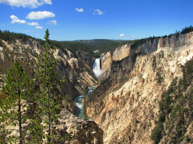Download Canyon Del Yellowstone - Del Wyoming Fotografia Stock - Immagine di cielo, cascata: 7300918