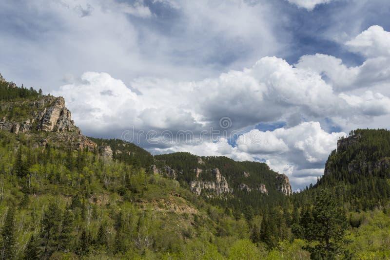 Canyon dell'aguglia imperiale fotografie stock