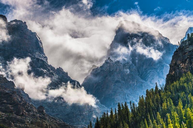 Canyon della cascata - grande parco nazionale di Teton fotografia stock libera da diritti