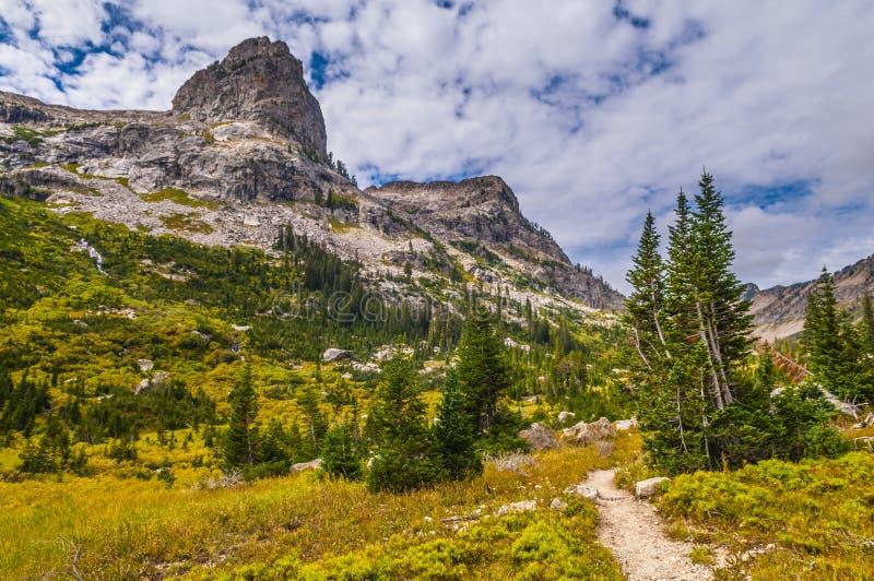 Canyon della cascata - grande parco nazionale di Teton immagine stock libera da diritti