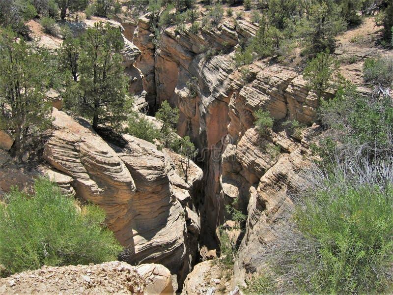 Canyon della scanalatura della gola della valle del toro fotografia stock