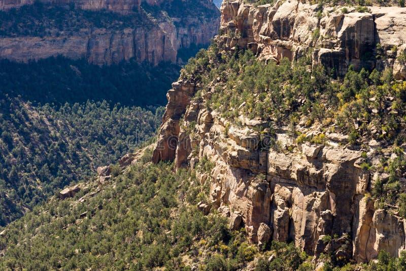 Canyon della soda vicino alla Camera del balcone, Mesa Verde fotografia stock