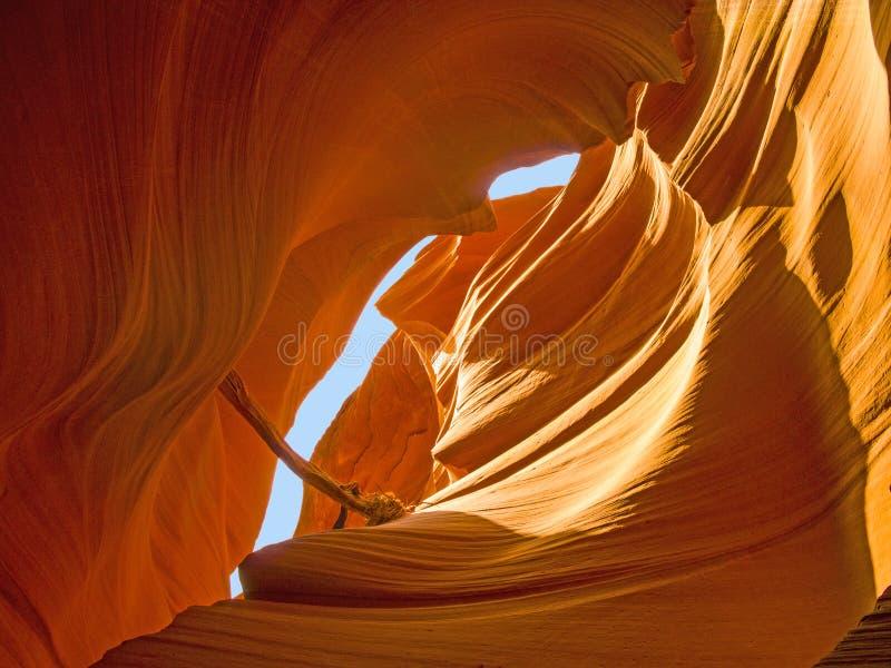 Canyon delle antilopi, il canyon di fama mondiale della scanalatura immagine stock