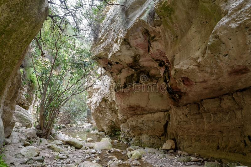 Canyon di Avakas nel Cipro fotografia stock