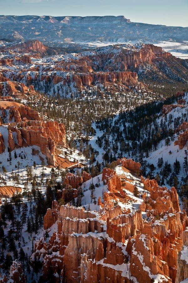Canyon di Bryce nella neve fotografia stock libera da diritti
