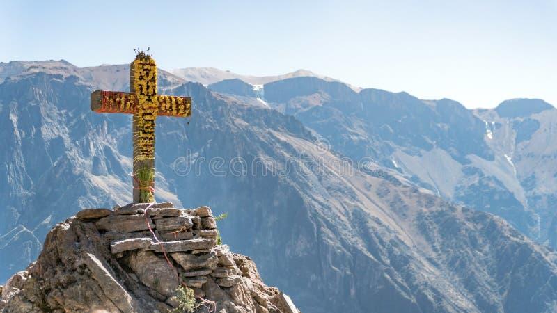 Canyon di Colca, Perù Primo piano trasversale del condor fotografia stock libera da diritti
