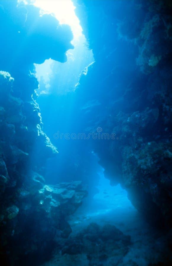 Canyon di corallo subacqueo immagine stock libera da diritti