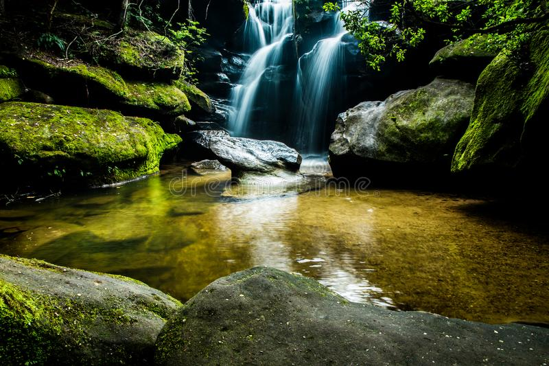 Canyon di Dismals, Phil Cambel Birmingham Alabama immagini stock libere da diritti
