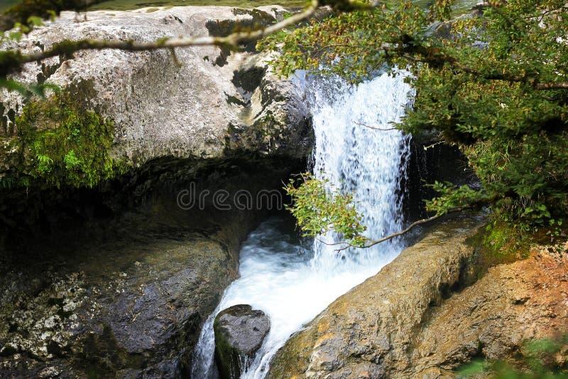 Canyon di Martvili, Georgia immagini stock
