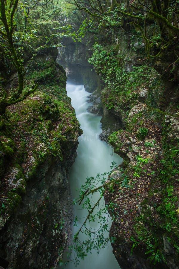 Canyon di Martvili in Georgia Bello naturale con la vista o fotografia stock