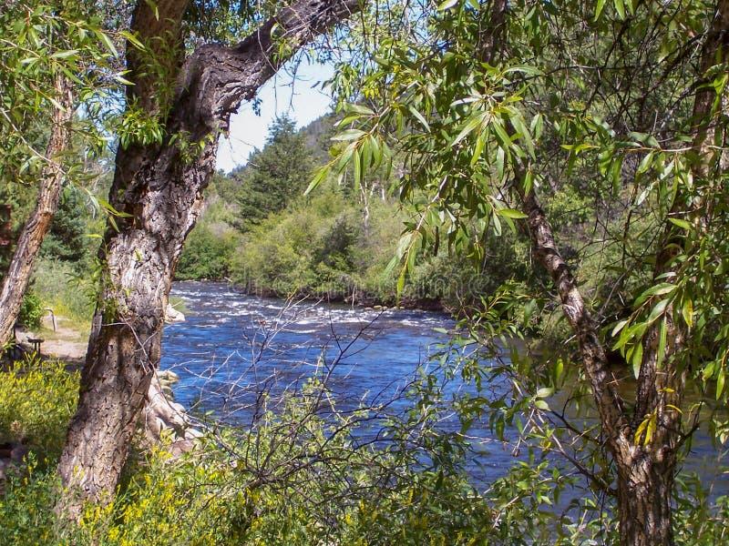 Canyon di Poudre, vista del fiume Colorado fotografia stock libera da diritti