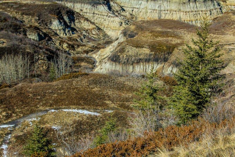 Canyon en fer à cheval, bad-lands canadiens, Drunheller, Alberta, Canada photo stock