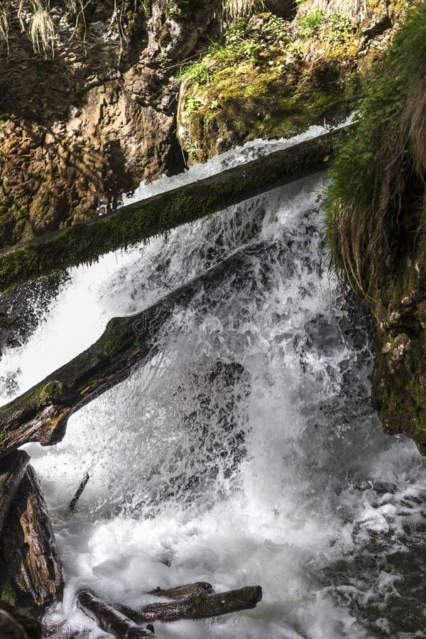 Canyon famoso di Galbena nella Transilvania fotografie stock libere da diritti