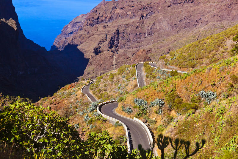 Canyon famoso Masca a Tenerife - canarino fotografie stock libere da diritti