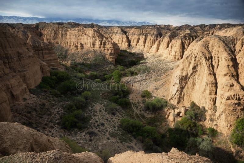 Canyon giallo fotografie stock