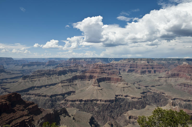 Canyon grand photographie stock