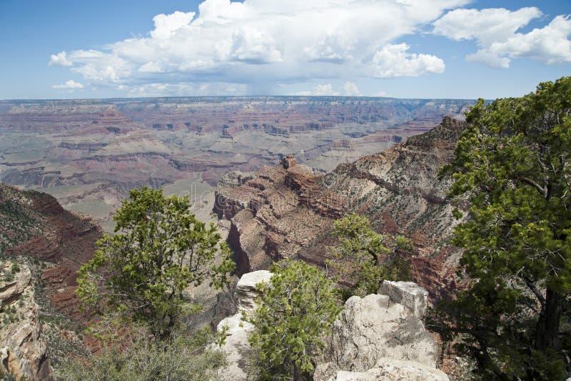 Canyon grand, Amérique photographie stock libre de droits
