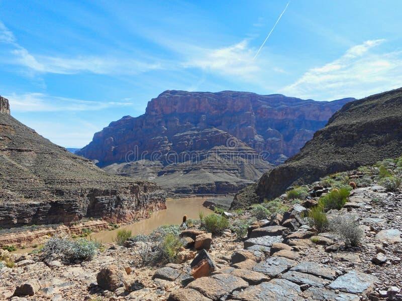 canyon grand avec une rivi?re image libre de droits
