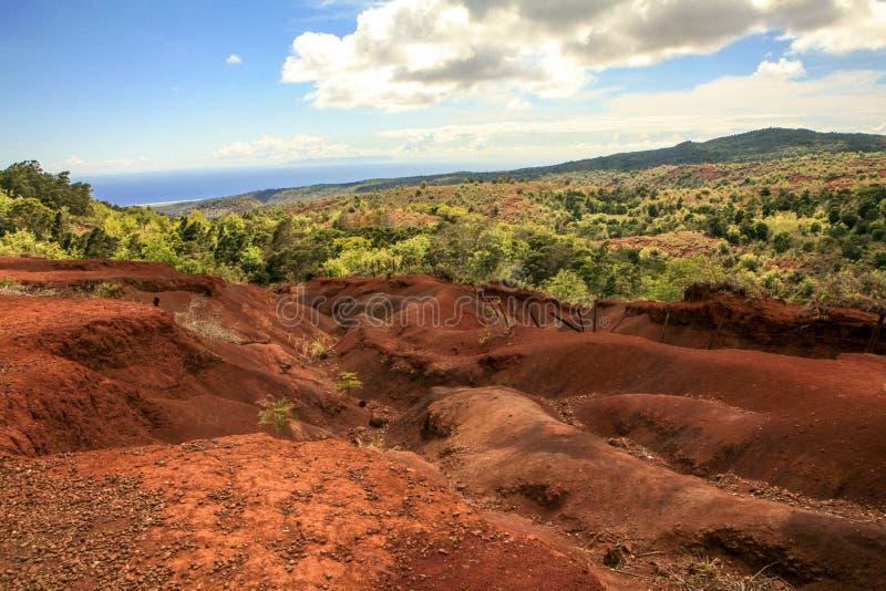canyon Kauai Hawaii waimea obrazy royalty free